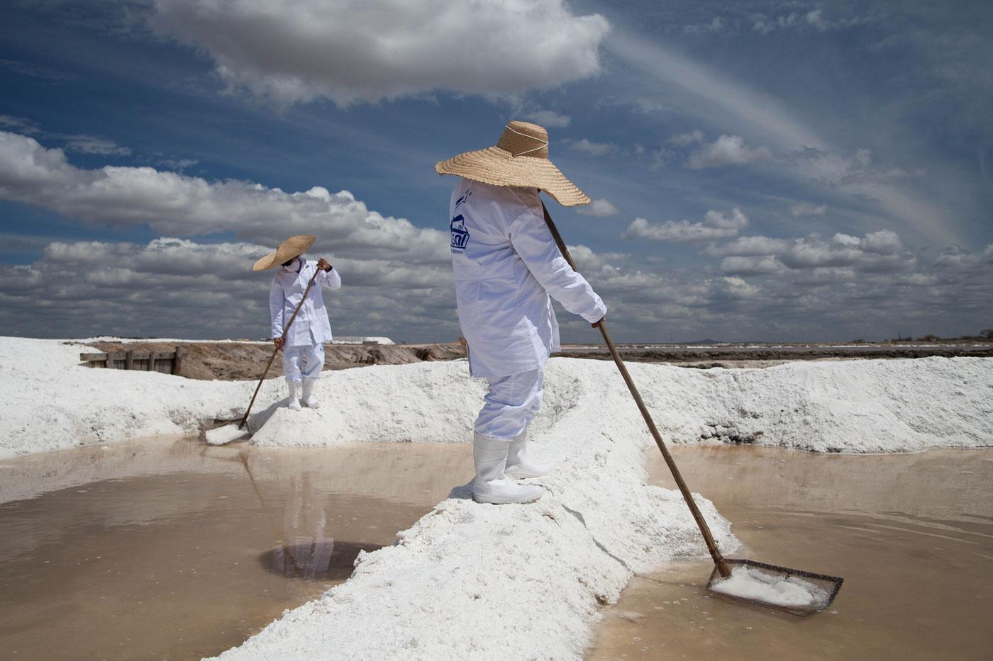 la sal Sal(del lat sal) 1 s f cocina sustancia blanca, cristalina y de sabor característico, compuesta de cloro y sodio, usada como condimento la sopa está sosa, échale más .