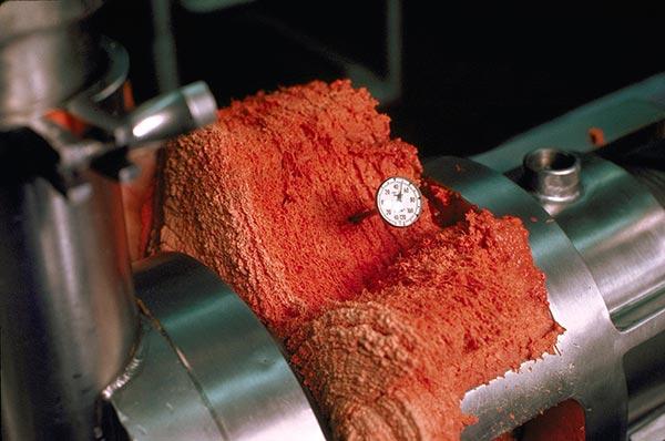 cms carne mecanicamente separada